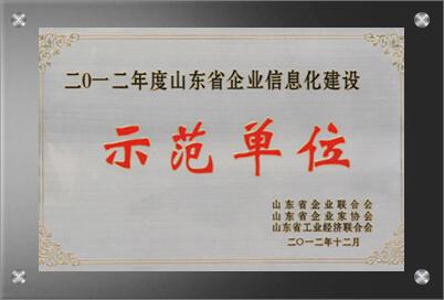 山东信息化建设示范单位